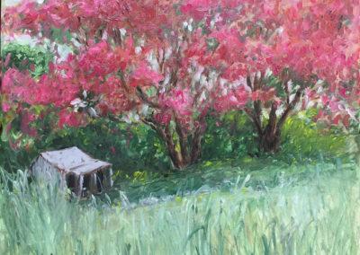 """Arboles de fuego - Brian M. Johnston - North American Impressionist Artist - oil on canvas, 18"""" x 22"""" Private Collection"""