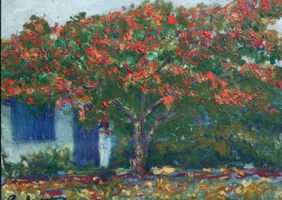 "Arbol de fuego II - Brian M. Johnston - North American Impressionist - (2018) 8"" x 10"" oil on canvas - US$ 250."
